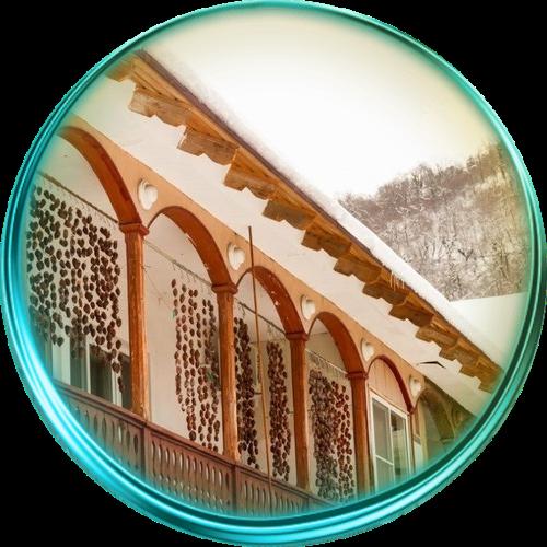 Сказочная природа и история Абхазии